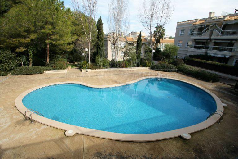 22030 Pool 1